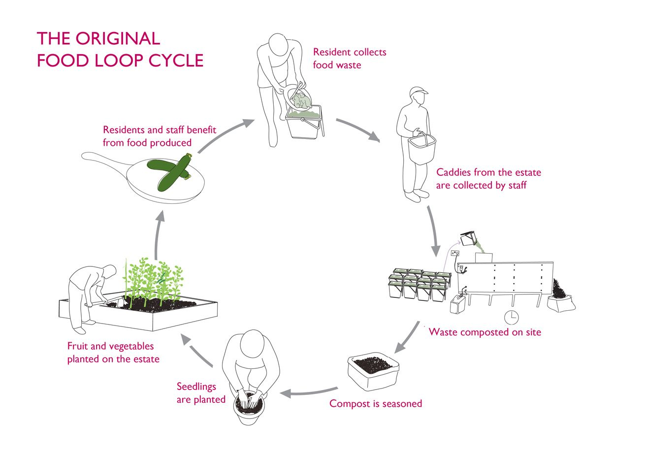 Clare Brass – Food Loop diagram, SEED Foundation www.foodloop.org.uk
