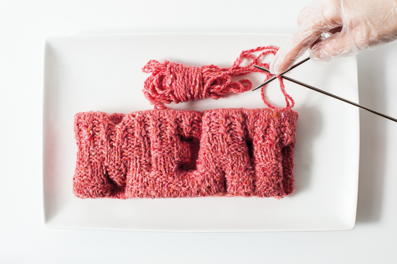 In Vitro Cookbook. Knitted Meat